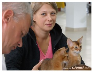 Givani.net - Moments • Моменты - Abyssinian kittens